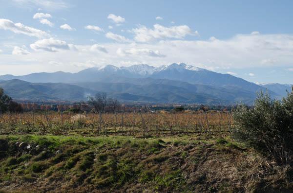 RoussillonnLonguedoc