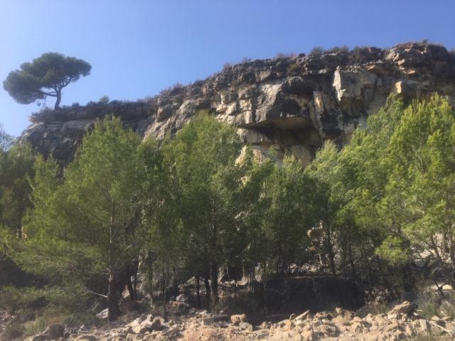 Nationalpark Cote d' Azur