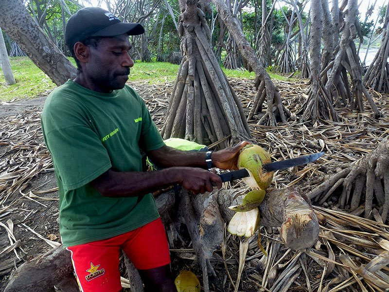 Our local Ni-Vanuatu guides are only too willing to expound their knowledge of bushcraft and Tannese Kastom and culture.