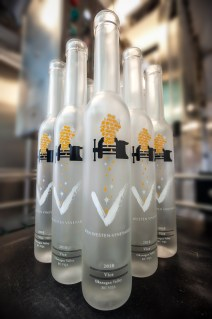 bottlestoEleanor-9