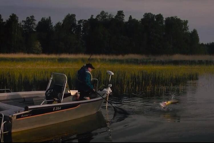 De Roofvis: Populaire Busters M en S voor de sportvissers – video