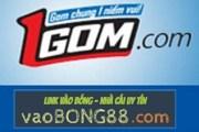 Link 1gom bị chặn? Tại sao tôi không thể truy cập vào 1gom.com?