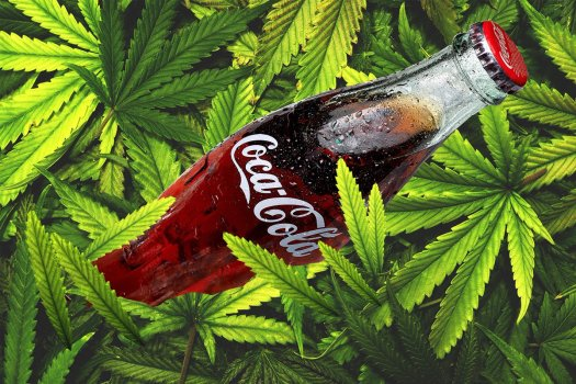cannabis coco cola