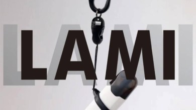 LAMI Tmax pod system review