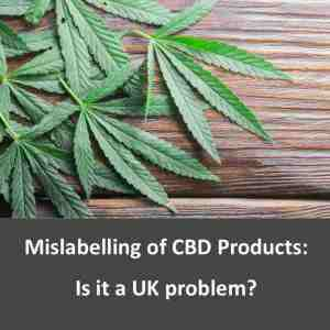 CBD SEO - CBD Specialists - Get one month FREE - No Contract
