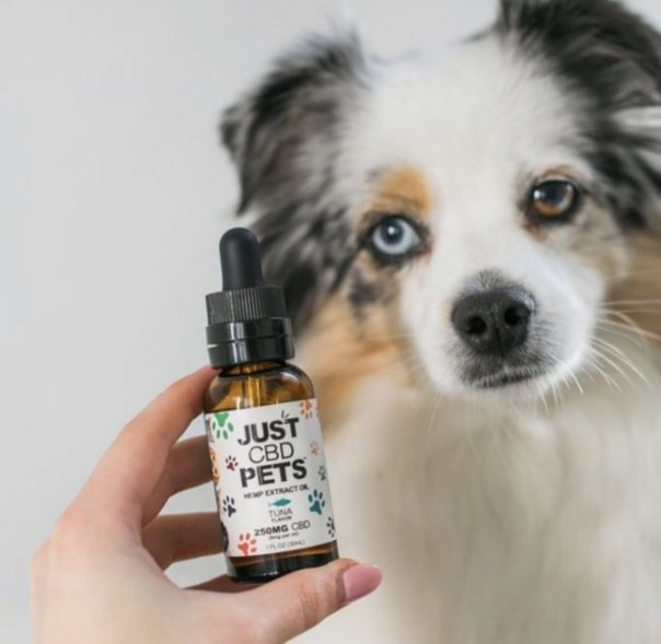 reddit which cbd to avoid