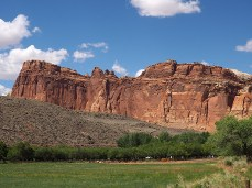 Orchards planted by Mormon settlers contrast with the red cliffs at Fruita