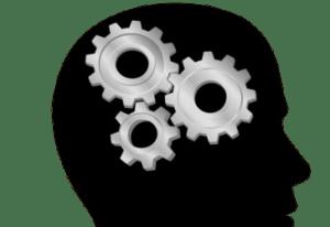 cerveauquestion