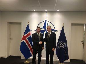 Guðlaugur Þór Þórðarson utanríkisráðherra og Jens Stoltenberg, framkvæmdastjóri NATO.