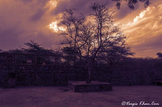 jamali-kamali-mosque-vargis-2