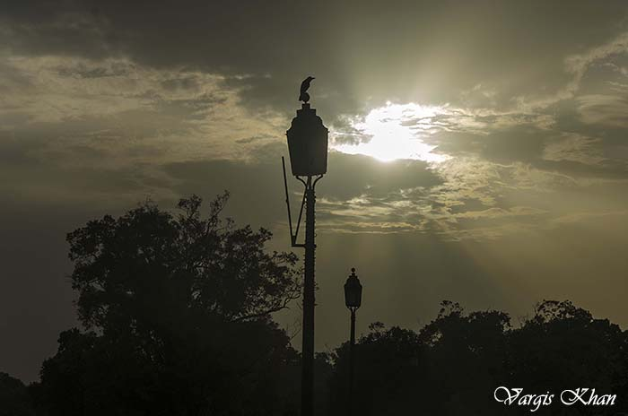 india-gate-photography-5