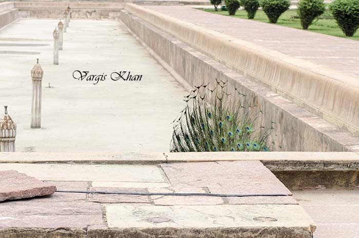 photography-at-safdarjung-tomb-1