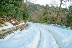 snow around delhi