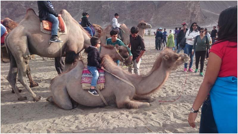 6c065f8dd729 Ladakh with Infants or Children - A Travel Guide - Vargis Khan