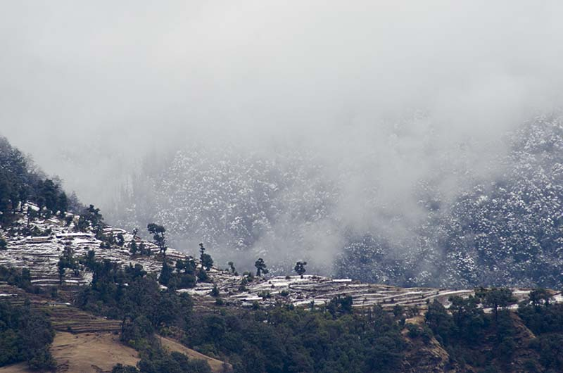 snowfall around gangtok