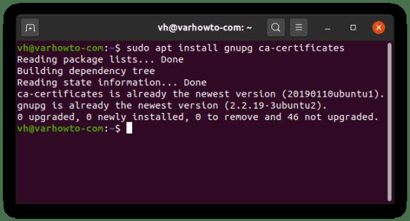 """Output of """"sudo apt install gnupg ca-certificates"""""""