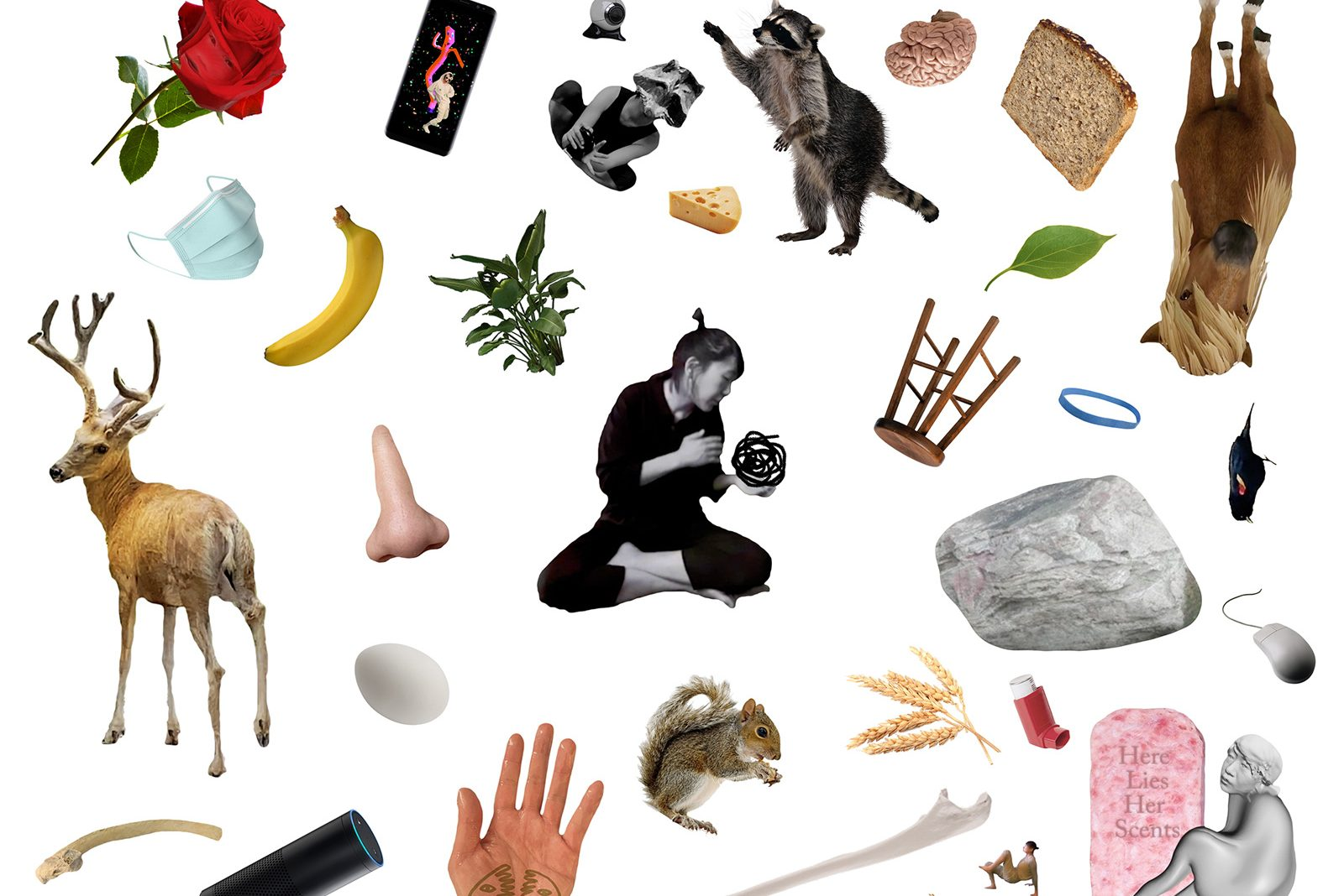 A jumble of digital images on a white background, including a red rose, a deer with large horns, a banana, a white person's nose, a raccoon, a wooden stool, a disposable face mask, and more. In the center there is a black and white photograph of a woman dressed in black sitting cross-legged, leaning to her left and holding a black, circular squiggle.
