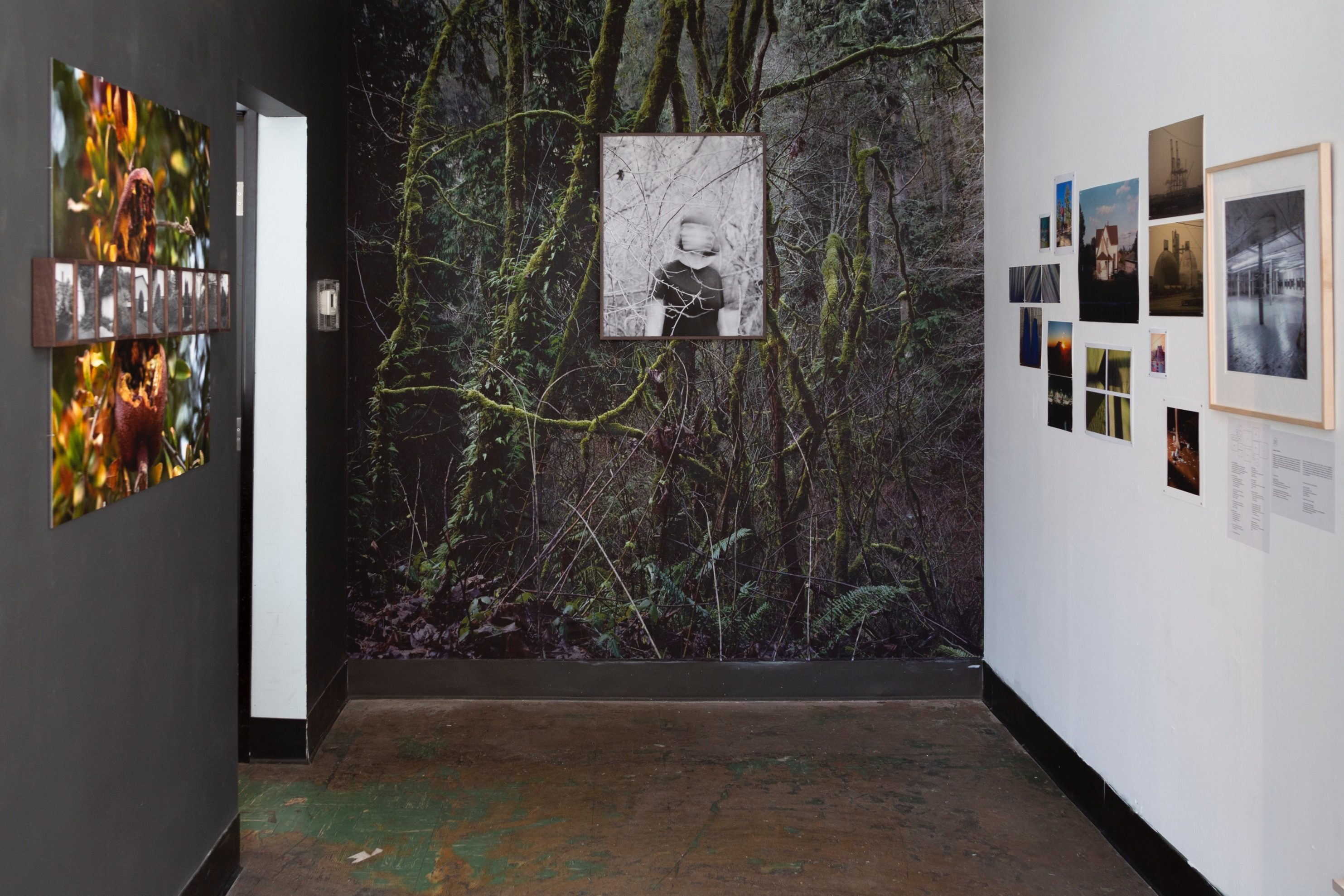 A room is dimly lit and features multiple pieces of art, including an arrangement of photographs on a white wall, and a blurred, black and white photograph of a woman on a wall, which features a forested backdrop.