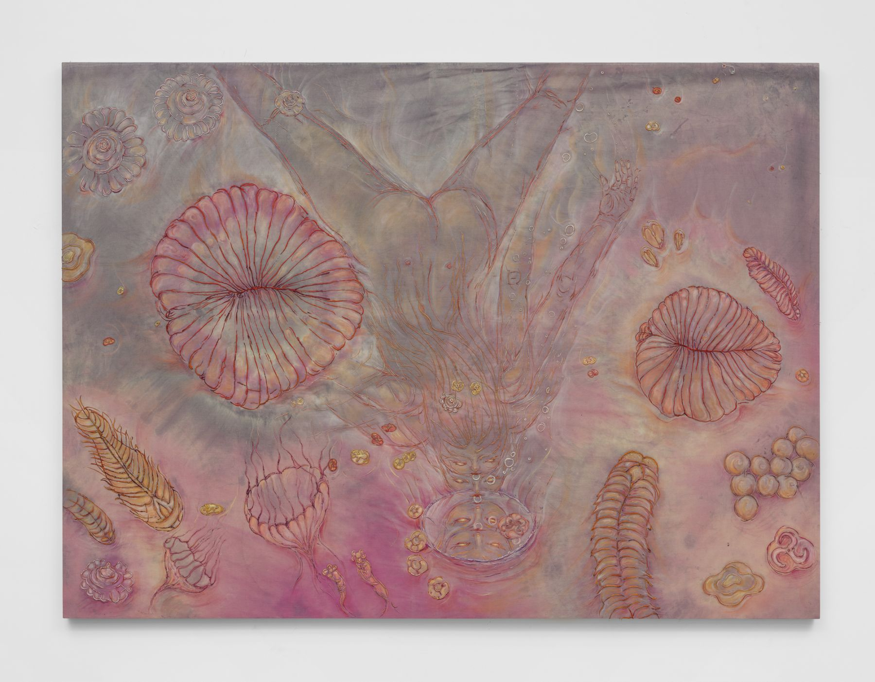 In a pink haze of submarine wonder, jellyfish, crustacean, and underwater etchings float to the foreground, behind which a naked individual swims downward to gaze into its own reflection in a mirror.