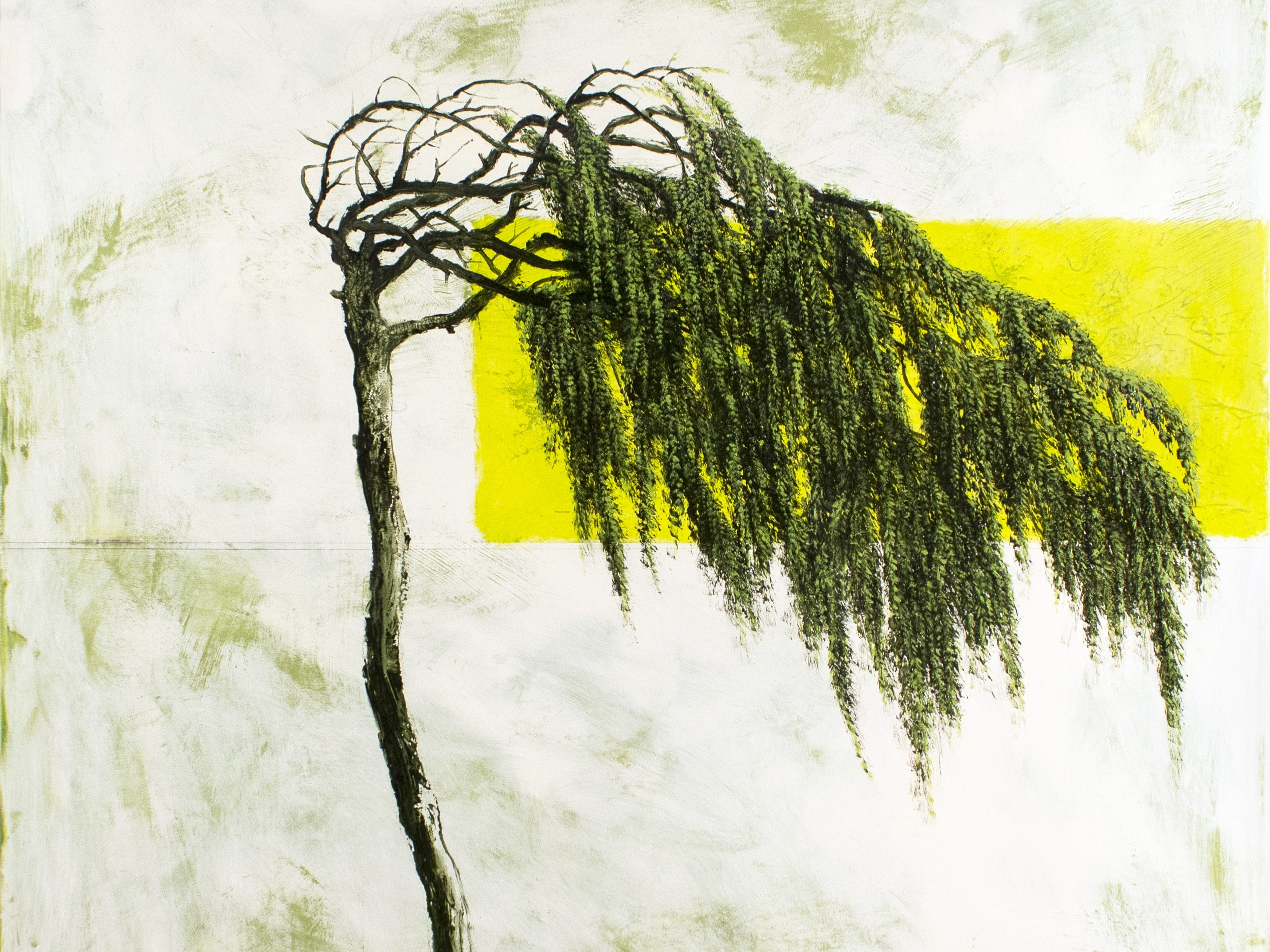 A tired tree's branches are bent to one side and droop. Painted against a cloudy white canvas, a stripe of white interrupts the background of the painting.