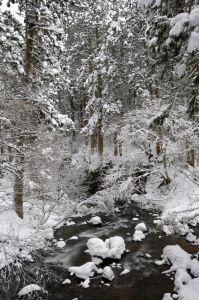 福岡県の雪払川