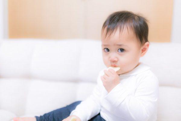 テアトルアカデミー 料金 赤ちゃんモデル