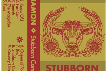 Anamon stubborn comfort artwork