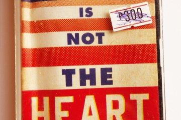 elaine castillo America is not the heart