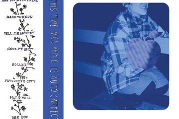 nice apple cassette artwork
