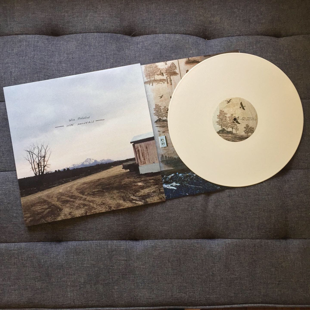 photo of will johnson wire mountain LP