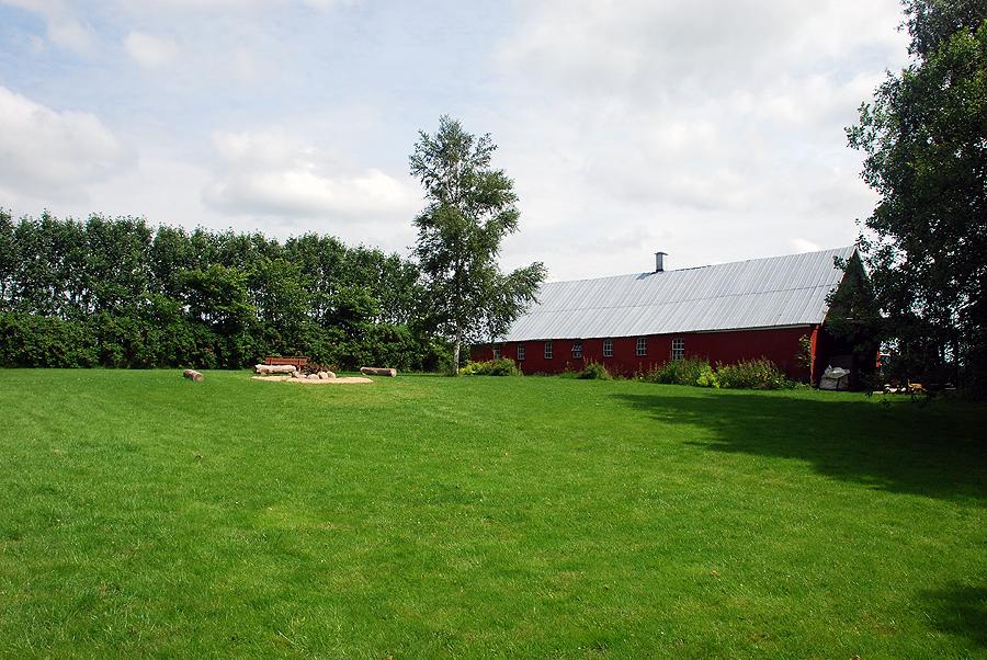 Græsplænen med kortklippet græs.