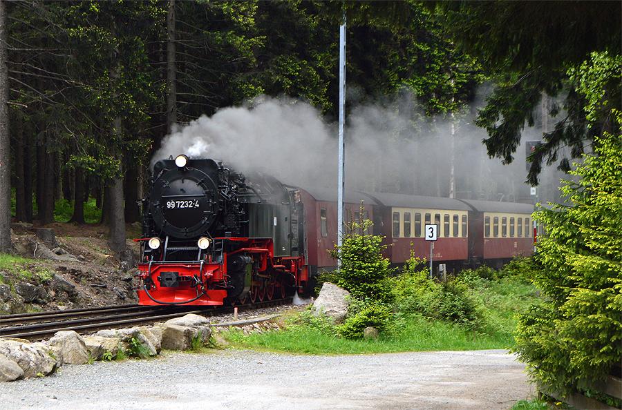 Harzen Damplokomotiv Miniferie i Harzen