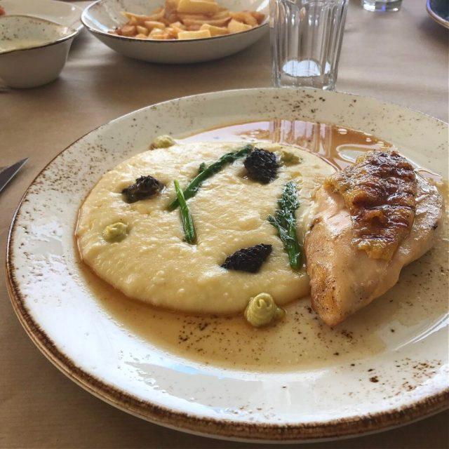 Hummus og kylling på Rachi