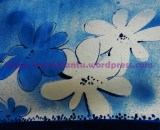 13T 5 Stencil border of hand painted sari