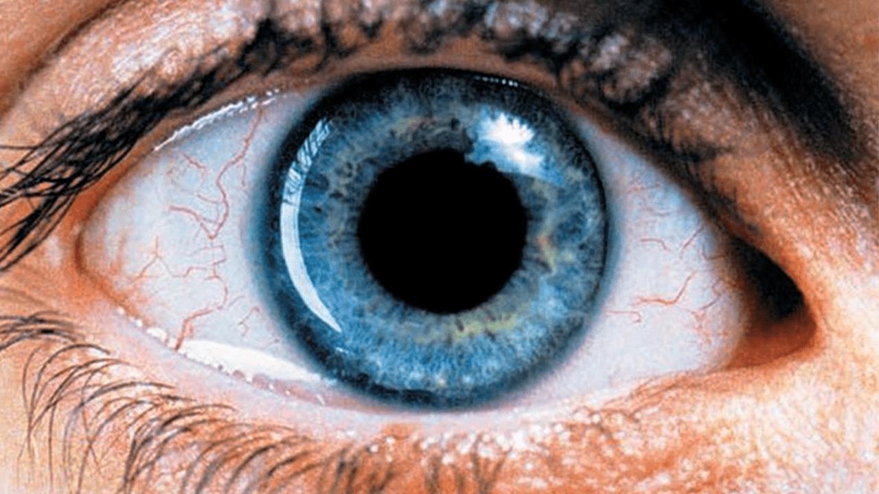 Narkoloji asılılıq ilə bağlı 10 film