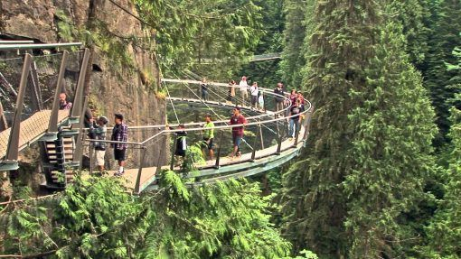 Capilano bridge Canyon