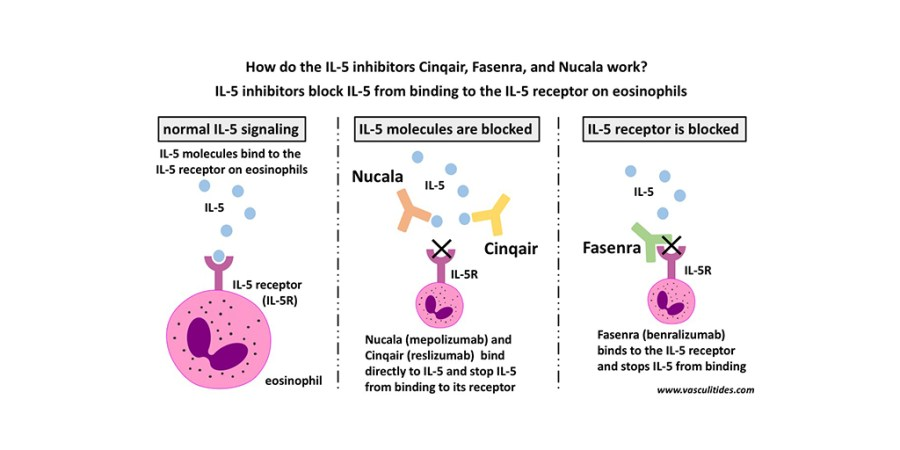 How do the IL-5 inhibitors Cinqair, Fasenra, and Nucala work?