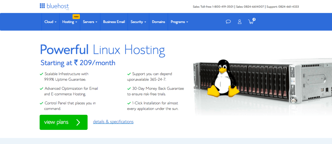 bluehost shared linux hosting