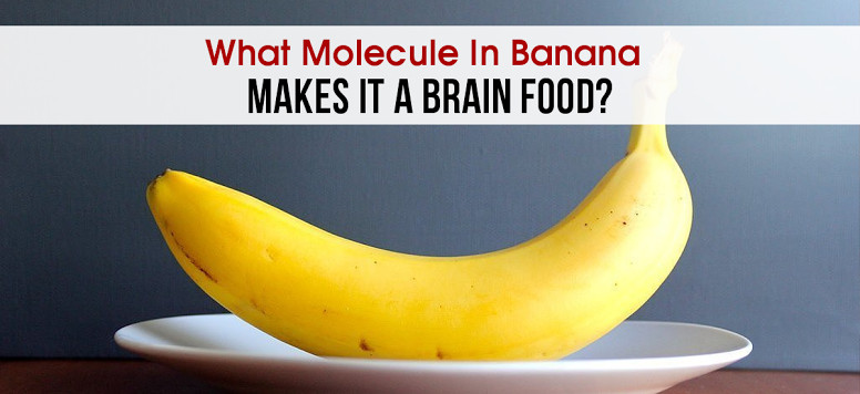 What Molecule In Banana Makes It A Brain Food?