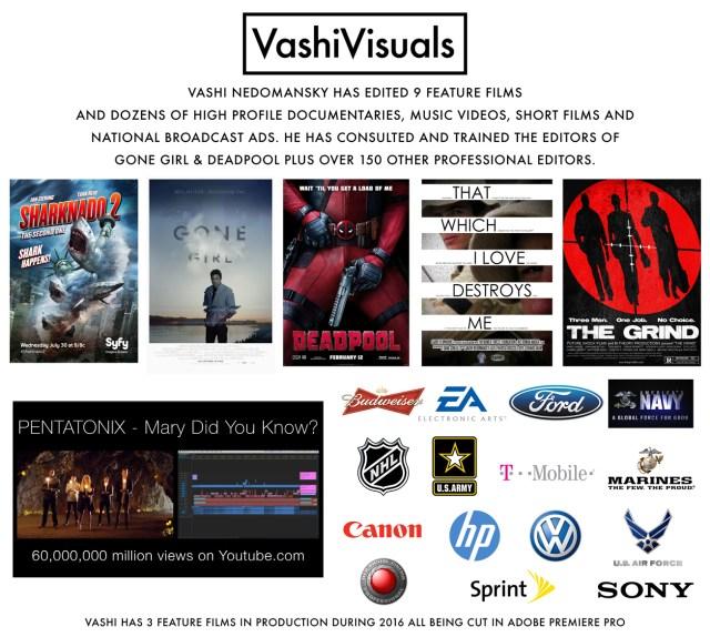Vashi Visuals Fact Sheet