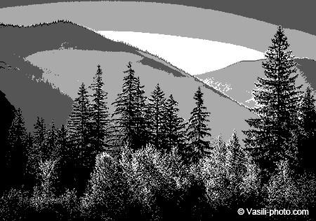 Как изменить градации серого 256. Преобразуем изображение в чёрно-белое: Градации серого. Режим «Индексированные цвета»