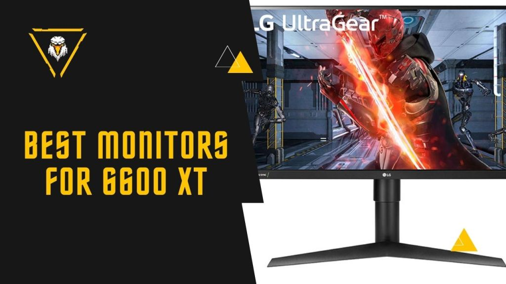 Best Monitors For 6600 XT