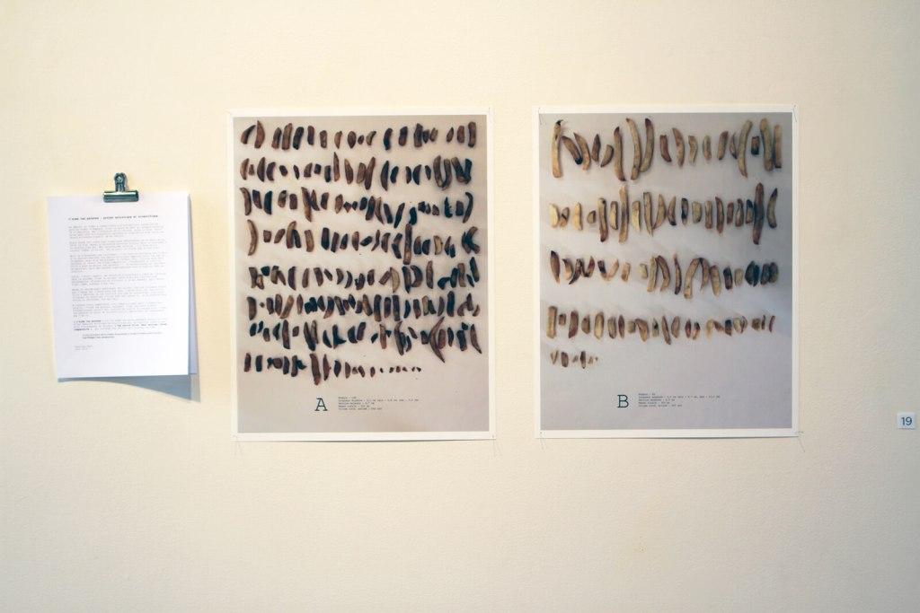 Caroline Noel | CASSE-CROÛTE | Exposition collective — Artistes membres