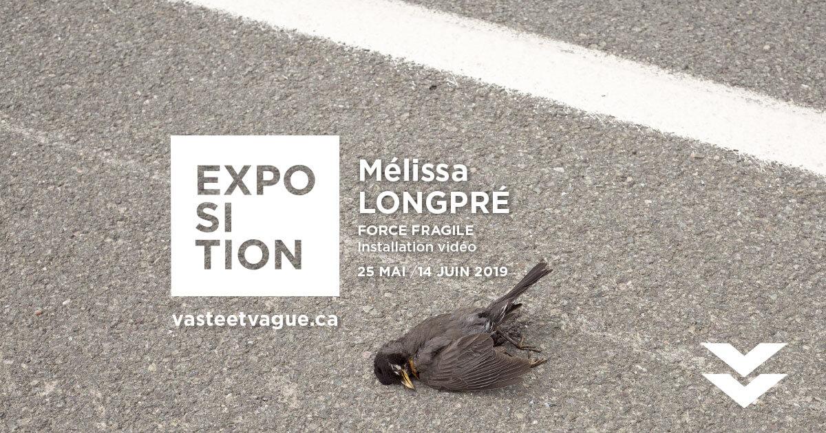 Mélissa LONGPRÉ : FORCE FRAGILE | Installation vidéo | Centre d'artistes Vaste et Vague | Programmation 2019
