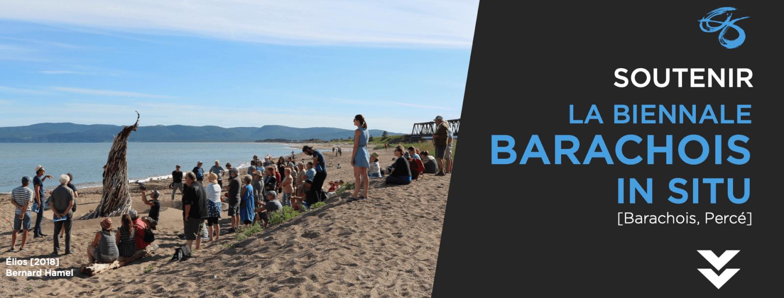 Soutenir La Biennale Barachois In Situ