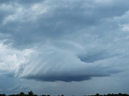 Meso with striations