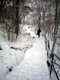 Snö och is på Henriksdalstrappan vintern 2008