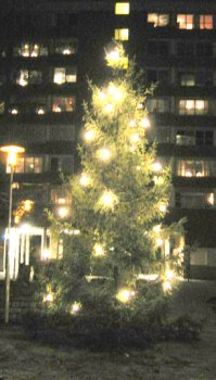 Henriksdalsbergets julgran 2007
