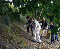 Kapsyljakt på Vilans skola, 2009