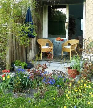 Uteplats med rosor, tulpaner och örter på Henriksdalsringens innergård